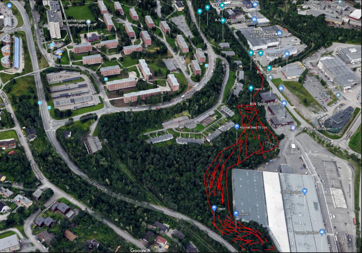 Alnabru fra Riis Bilglass og skogen over OBS v/Gangvegbro
